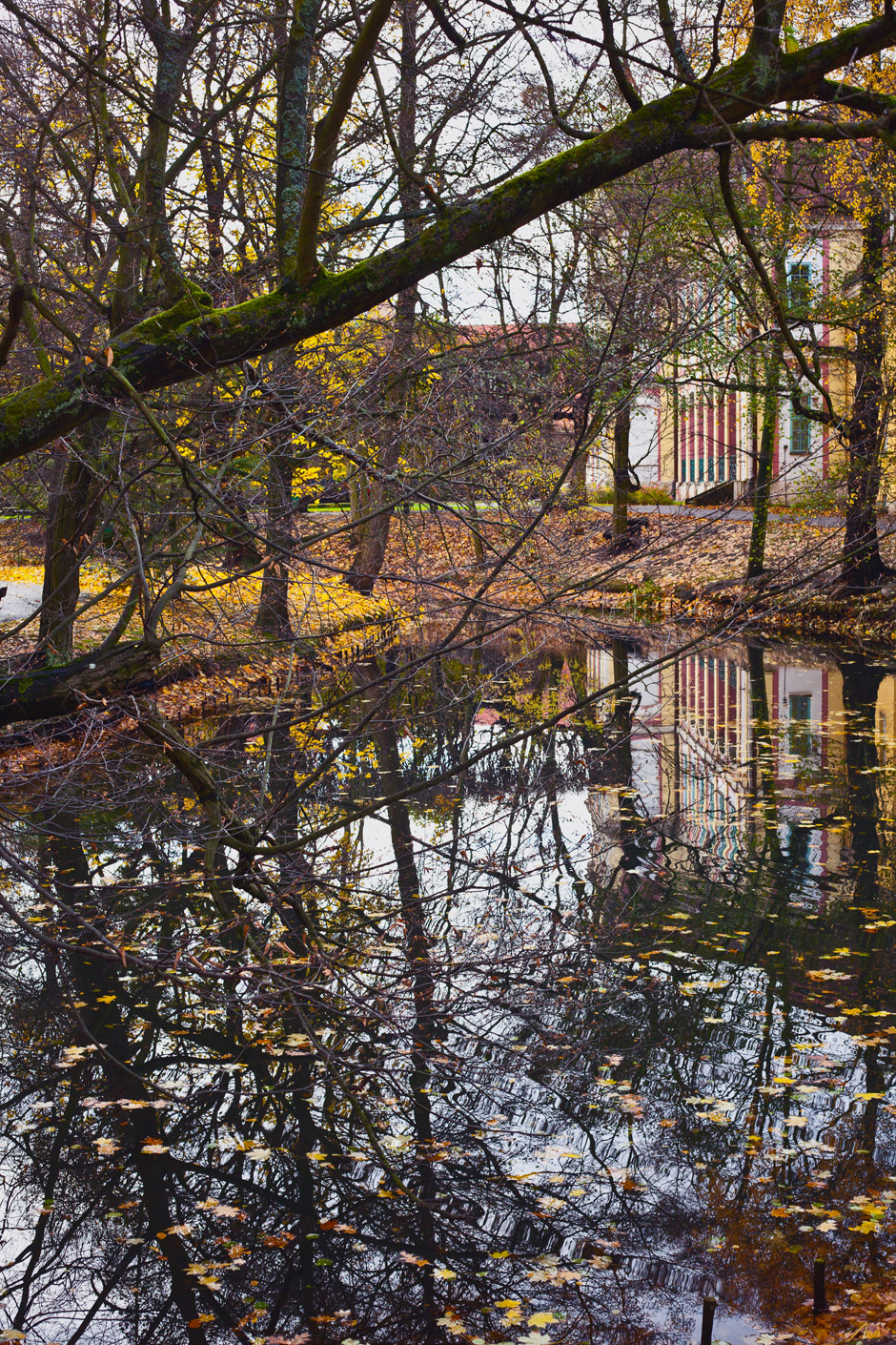 park-oliwski-jesienia-fotografia-blog-innooka-9