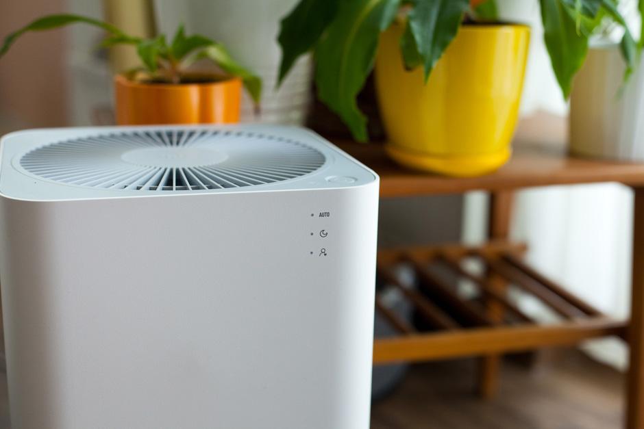 oczyszczacz powietrza dla alergika